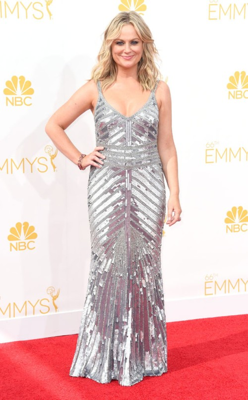 rs_634x1024-140825164847-634.amy-poehler-emmy-awards-red-carpet-082514